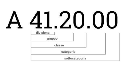 struttura alfanumerica codice ateco