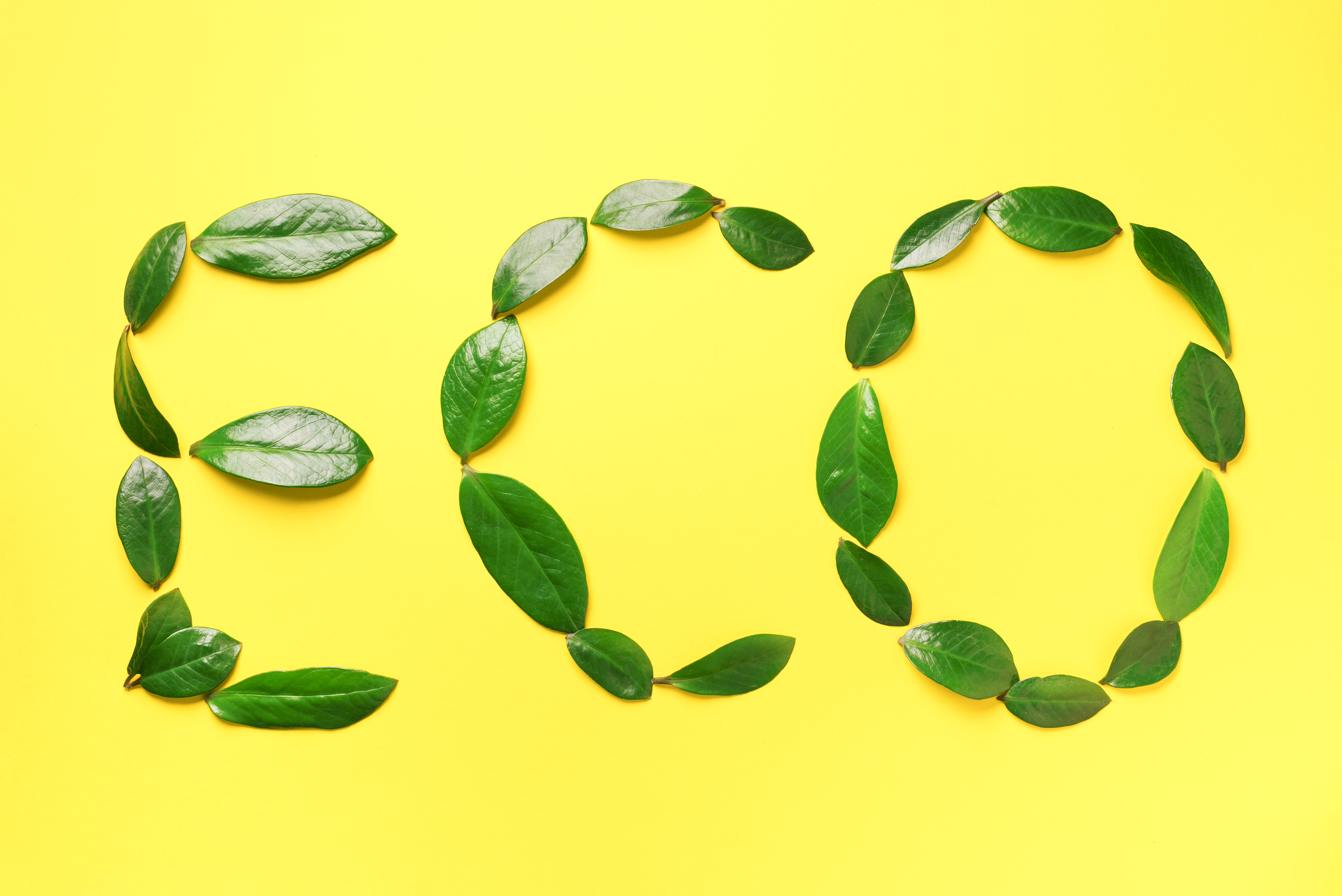 word-eco-made-of-green-leaves-on-yellow-background-B7FS9UR